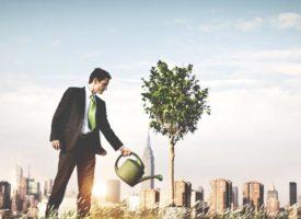 9 вещей, которые должны знать предприниматели, о SEO
