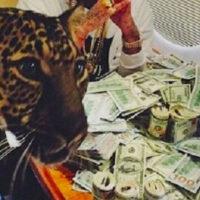 Универсальны советы для любого SMM специалиста в Instagram от мексиканских наркобаронов