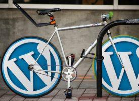 Как избавится от дублей на WordPress