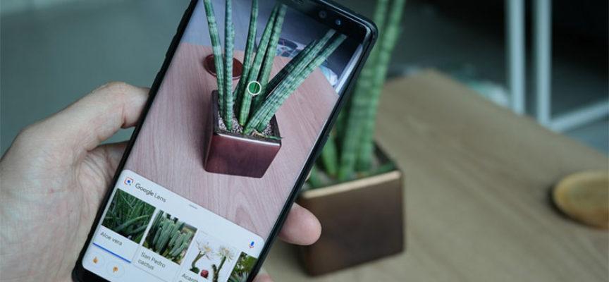 Google Lens теперь доступен в результатах поиска изображений Google